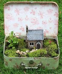 miniature garden in an open vintage suitcase