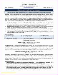 Resume Writing Services Nyc New Resume Writers Nyc Fresh Executive
