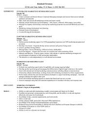 Download Marketing Senior Specialist Resume Sample as Image file