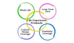 4 Best Whole Life Plans In Singapore For Insurance Coverage