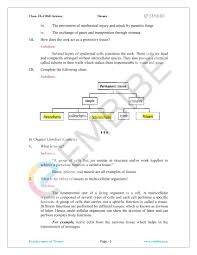 Tissue Chart Answer Key Cbse Ncert Solutions For Class 9 Science Chapter 6 Tissues