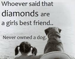 Quotes About Dogs And Friendship Awesome 48 Inspirational Dog Quotes SpartaDog Blog