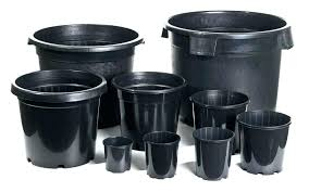 Nursery Container Sizes Chart Plant Pot Sizes Chart Matchsearch Info