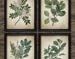 on leaf wall art set with vintage leaf wall art print etsy