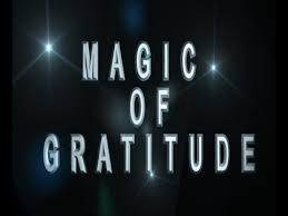 Image result for gratitude is magic
