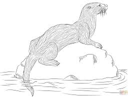 Small Picture sea otter coloring pages Google Search sea otters Pinterest