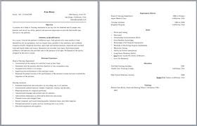 Two Page Resume Best Of Multiple Page Resume Examples Examples Of