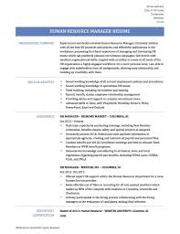 Download Human Resource Manager Resume Haadyaooverbayresort Com