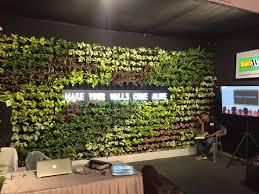 Vertical Garden |Green Wall Bareilly