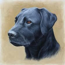 black labrador oil painting pet portraits dog portraits
