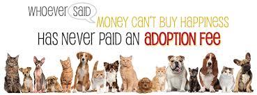 Image result for pet adoption
