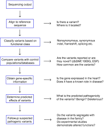 Flow Chart Showing Steps For Dna Sequence Analysis Esp