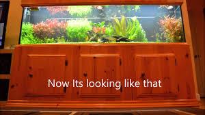 125 Gallon Aquarium Light Hood My 125 Gal Planted Aquarium With Diy Stand And Canopy