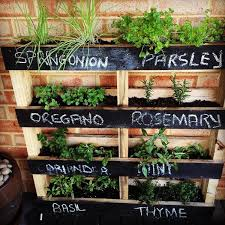 if your outdoor space is limited make a vertical herb garden from a pallet and