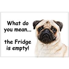 pug fridge magnet funny exclusive birthday or gift for pug lover