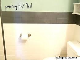 painting bathroom wall tile
