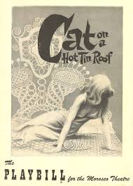 cat on a hot tin roof essay cat on a hot tin roof essay pdf