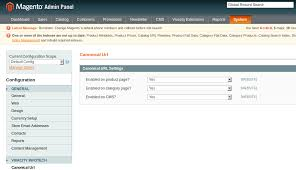 Canonical URL Magento Extension by vivacityinfotech | CodeCanyon