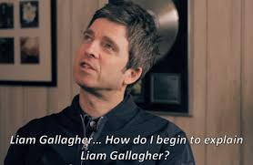 Frank Gallagher Quotes Beauteous Liam Gallagher Quotes Tumblr