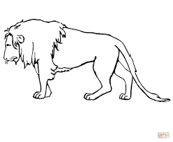 Lions coloring pages | Free Coloring Pages