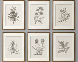 botanical prints botanical print set botanical art botanical wall art botanical art prints kitchen decor kitchen wall art wall art on wall art prints etsy with drawing illustration etsy