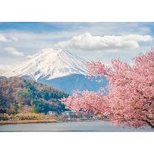 Cherry Blossom Backdrop Allenjoy Professional Photography Background Beautiful Mountain Fuji Spring Japan Cherry Blossom Backdrop Photo Studio Photocall