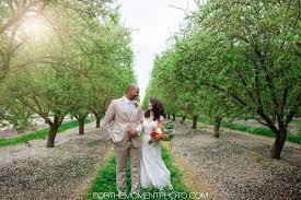 fresno california spring wedding photographer
