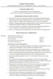 Professional Summary Resume Sample | Experience Resumes