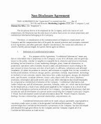 Nda Agreement Template Word Inspirational Non Disclosure Agreement