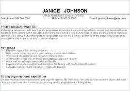 Resume Profile Examples Extraordinary Resume Profile Example Profile For A Resume Examples Sample Of