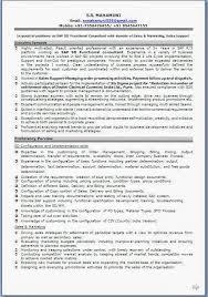 Curriculum Vitae Sample Format Sample Template Example Ofexcellent
