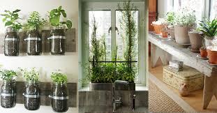 Indoor Gardening Idea  DECOOR