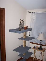 cat scratching post plans hd wallpaper utsprokids