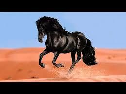 """<b>Цыганские песни</b> и романсы """"Беговые кони"""" - YouTube"""