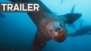 Blue Planet II Official Trailer 2 | BBC Earth - YouTube