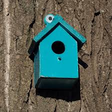 Sparrow Birdhouse Hole Size Chart Nest Box Size Guide Gardenbird
