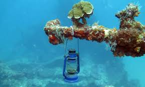 real underwater world. Plain World Travelbigimg For Real Underwater World