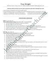 Example Executive Assistant Resume Sample Professional Resume