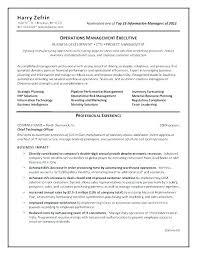 Information Technology Team Leader Sample Resume Podarki Co
