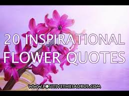 Beauty Of Flowers Quotes Best Of Positive Quotes Series Inspirational Flower Quotes Slideshow Video