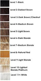Hair Levels Chart In 2019 Hair Chart Hair Color Formulas