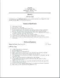 Free Example Resume Beauteous Sample Resume High School Student No Job Experience Example Free