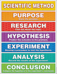 Science Fair Project Labels Printable Our Life With Ll Kids Science Fair Science Fair