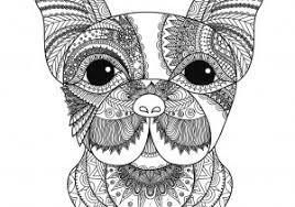 60 Mandala Da Colorare E Stampare Di Animali Con Mandala Da Stampare