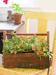 rustic planter box with plants