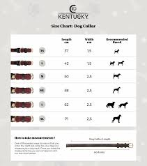 Collar Size Chart Kentucky Horsewear Plaited Nylon Dog Collar Navy Equi Exclusive