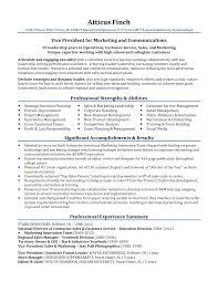 Resume Sample Professional Resume Samples By Julie Walraven CMRW 52