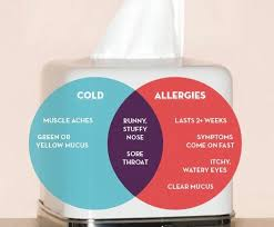 Is It A Cold Or Allergies? – Upstream Downstream