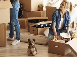 moving house or purchasing a new pet we offer an express service