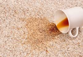 how to remove the top five carpet stains